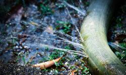 איתור נזילות בחצר – סימנים מחשידים