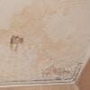 <h3>רטיבות בתקרה באמבטיה? אל תתמודדו לבדכם</h3>